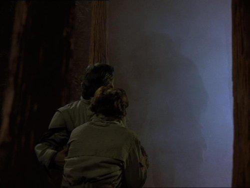 Star Wars - La aventura de los ewoks - Gorax va a por los padres