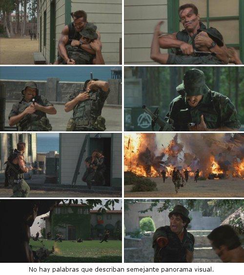 Commando - Masacre