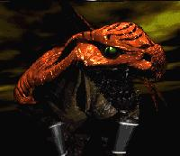 Killer Instinct - Riptor